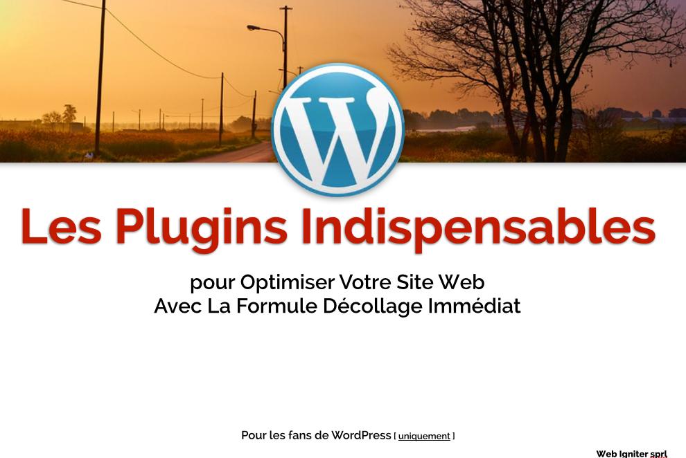 Teaser FDI-Liste-Plugins-WP-Optimisation-Site